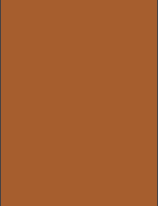 RAL 8023 - Orange brown