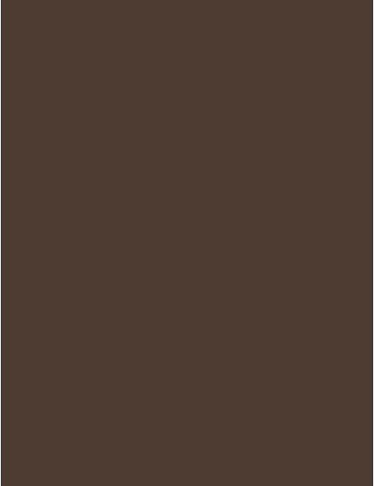RAL 8028 - Terra brown